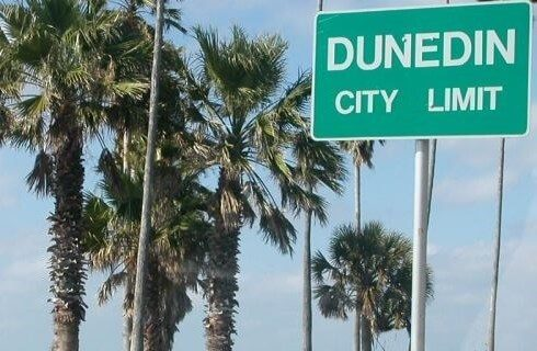 Palm trees against the sky with a green road sign stating DunedIn City Limit
