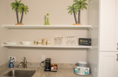 Sink and counter under shlves with plates and cups and palm tree decor.